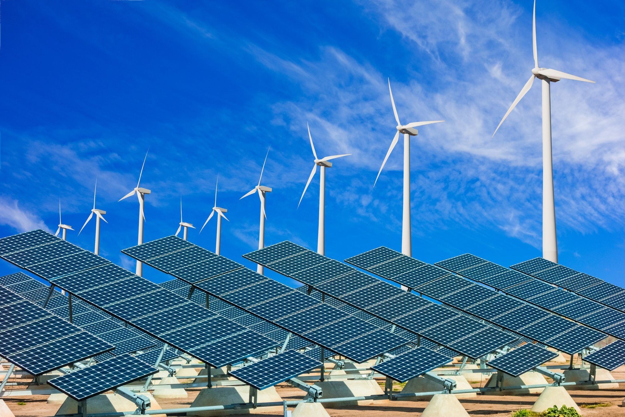 Renewables are expected to overtake coal as the method of generating electricity